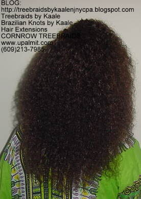 Treebraids by KAALE- Brazilian Virgin Kinky Curly, Back2192.