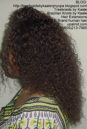 Treebraids by KAALE- Brazilian Virgin Kinky Curly, Left2193.
