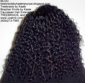 Tree Braids by Kaale- Double Breasted cornrow treebraids with deep bulk as always, back.