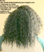 Tree Braids by Kaale- Cornrows Back2497.