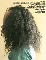 Tree Braids by Kaale- Cornrows Left2498.