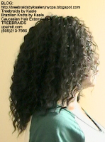 Tree Braids by Kaale- Cornrows Right2499.