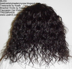 Tree Braids by Kaale- remy hair used for these cornrow treebraids with curly hair, Back 1.