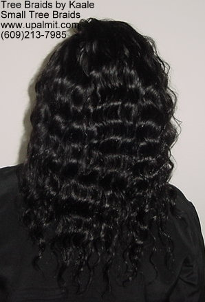 TreeBraids with invisible part.