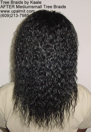 Wavy and curly tree braids- back veiw.