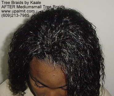 Wavy and curly tree braids- Top.