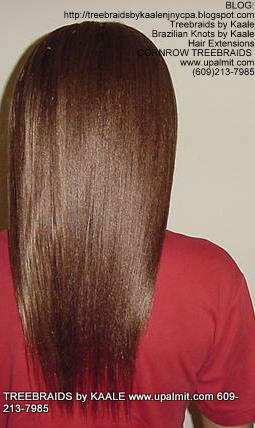 Treebraids by KAALE- Straight, Back2176.