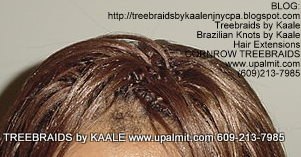 Treebraids by KAALE- Straight, Top2 2179.