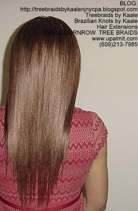 Small cornrow treebraids- straight Back2156.