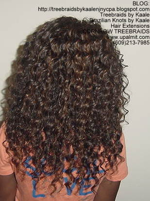 Tree Braids using KAALE Brand Deep Bulk human hair Back213.