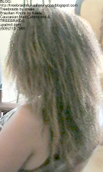 Tree Braids by Kaale- kinky curly treebraids NLeft.
