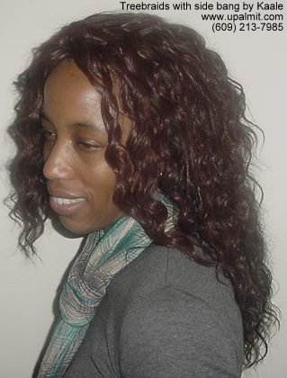 Treebraids- curly treebraids left side view.