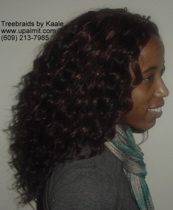 Treebraids- curly treebraids right side view.