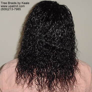 wet and wavy individual treebraids 2