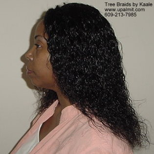 wet and wavy individual treebraids 3.