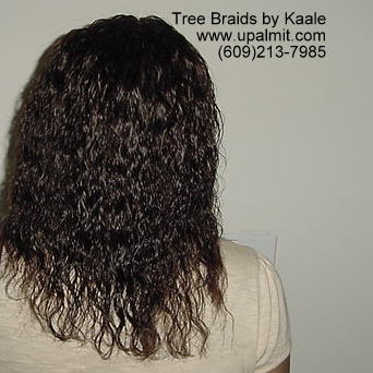 Summer, vacation, and beach wet and wavy Tree Braids- back.