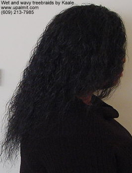 Wet and wavy treebraids with invisible part, right side.