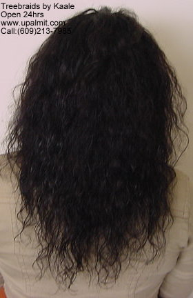 Treebraids with indian hair by Kaale, back view.