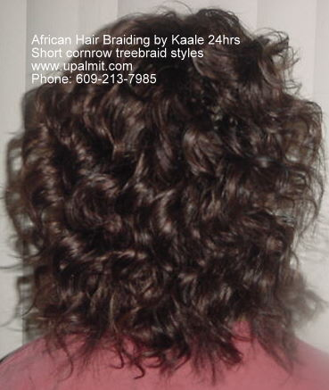 Short treebraids styles by Kaale NJ, PA, NY- back view.