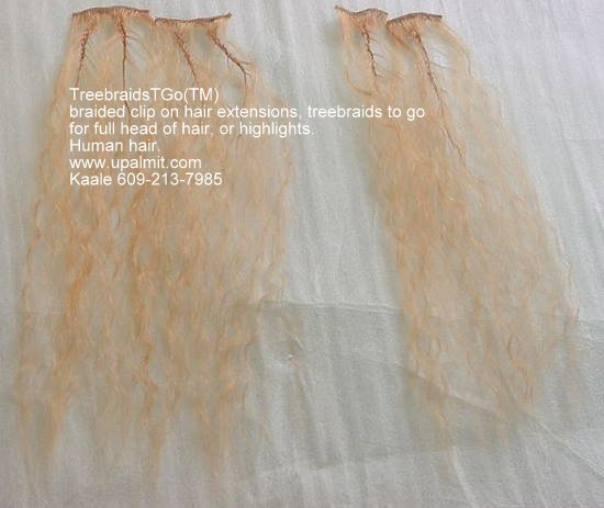 TreebraidsTGo(TM) hair extensions has the following advantages: saves time, money, and your scalp.><br /><br /><h2><a href=