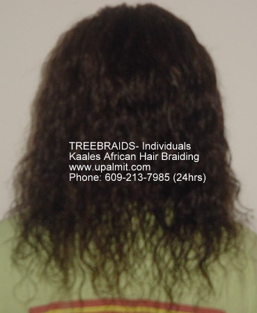Treebraids by Kaales African hair braiding.