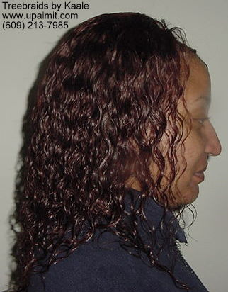 Wet and wavy treebraids with invisible part.