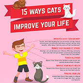 link to 4 Ways Cats Are Good For Your Heath