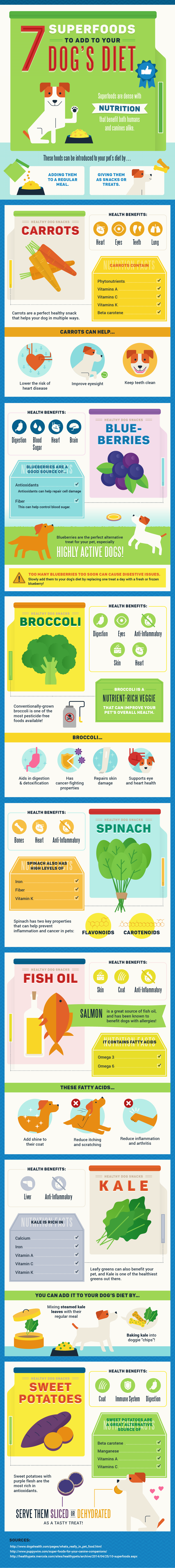 7 Superfoods to Add to Your Dog's Diet - infographic