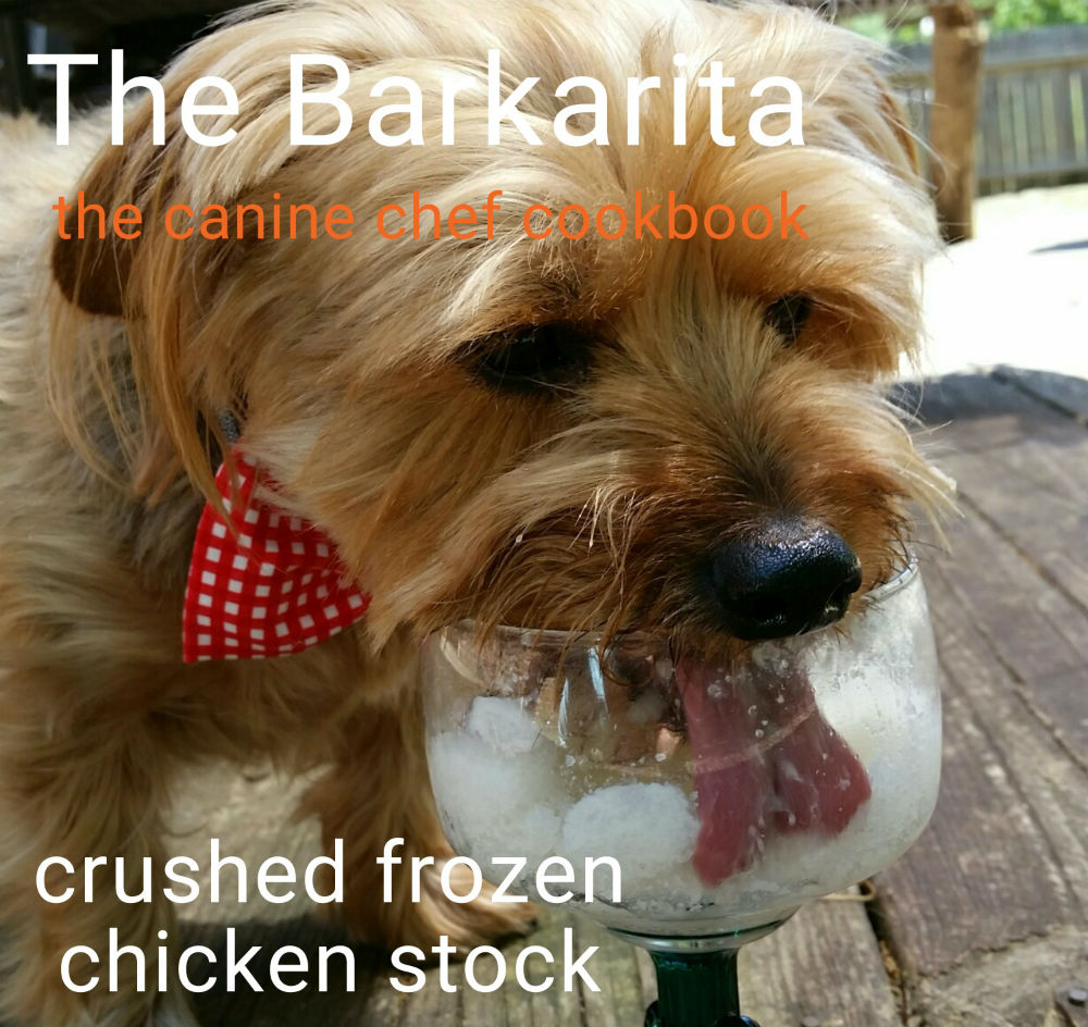 Barkaritas, a Margarita Recipe for Dogs