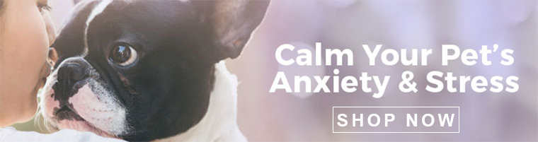 Calm Your Pet's Anxiety & Stress Show Now Banner
