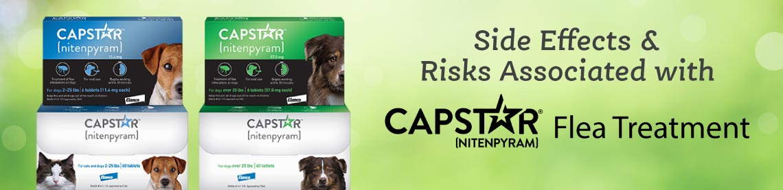 Side Effects and Risks Associated with CAPSTAR Treatment