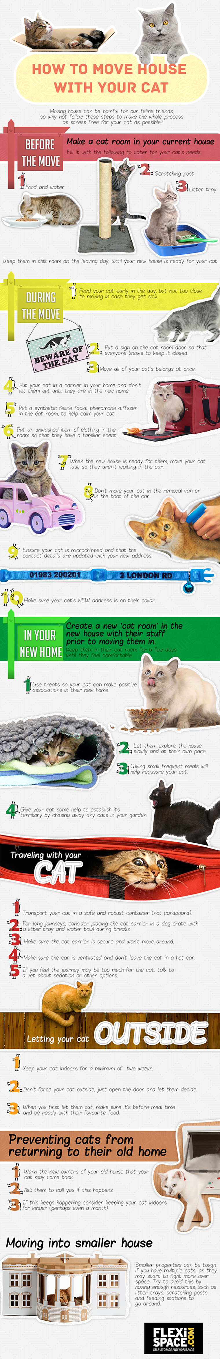 How-To-Move-House-With-Your-Cat