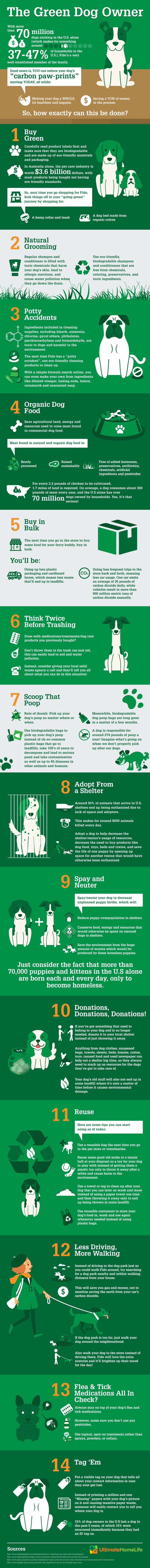 Going Green With Your Pet / Infographic