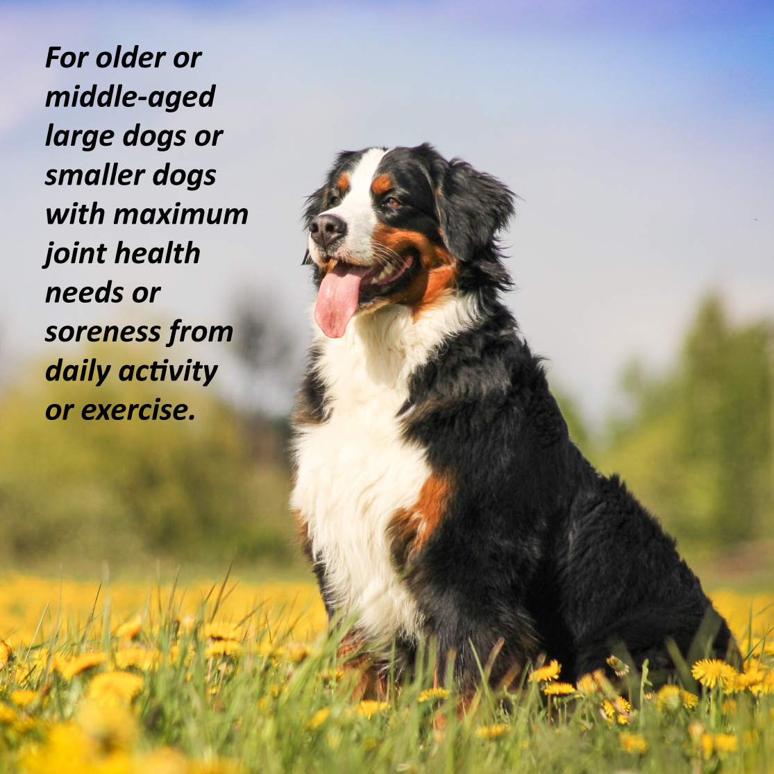 JointMAX Triple Strength for Dogs For older or middle-aged large dogs or smaller dogs with maximum joint health needs or soreness from daily activity or exercise.