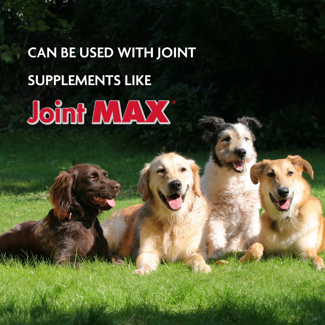 Can be used with joint supplements like Joint MAX