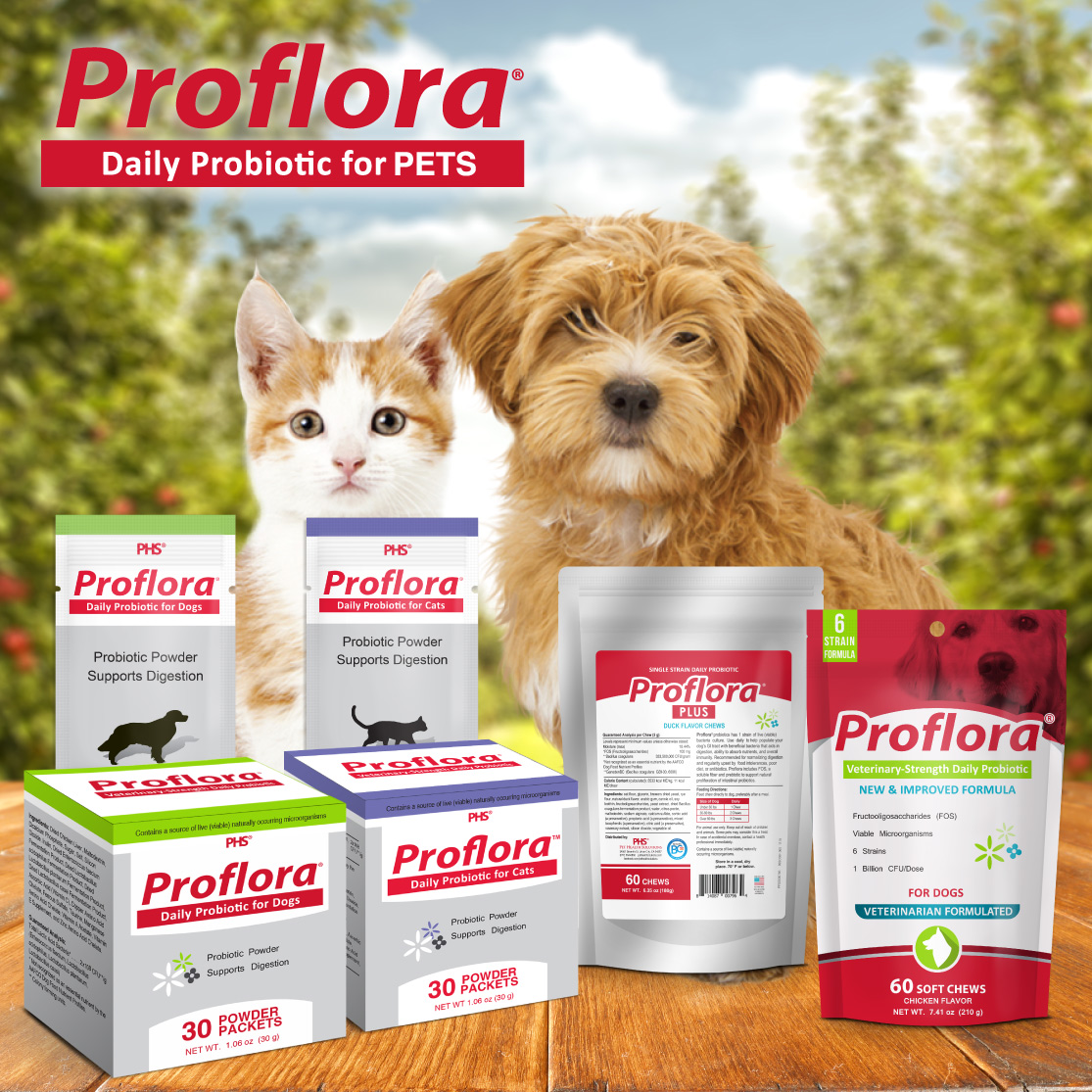 Proflora Daily Probiotic for PETS