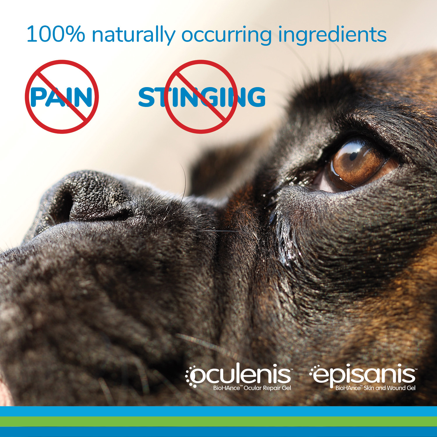 100% naturally occurring ingredients. No pain. No Stinging. Episanis. Ocunovis.