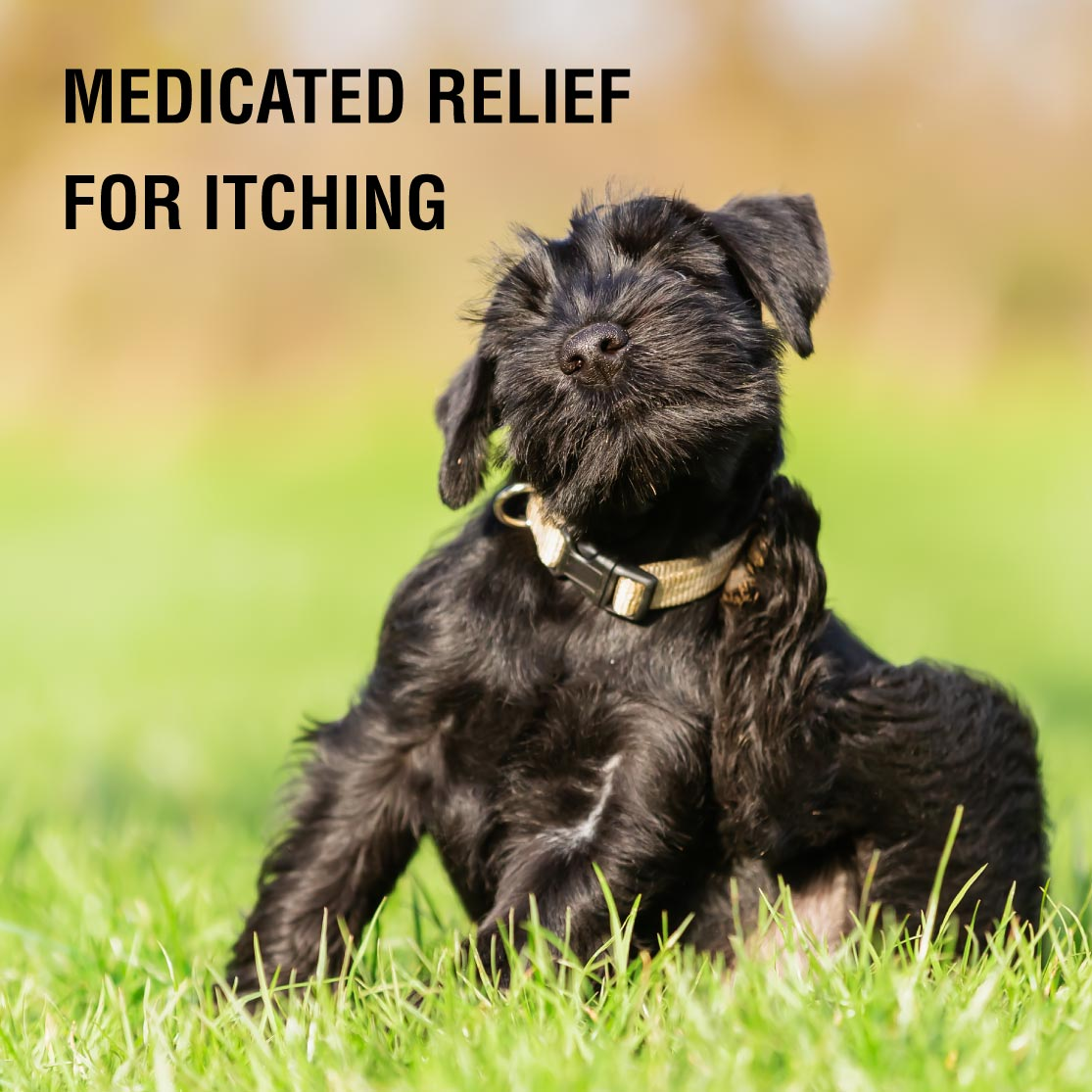 Medicated Relief for Itching