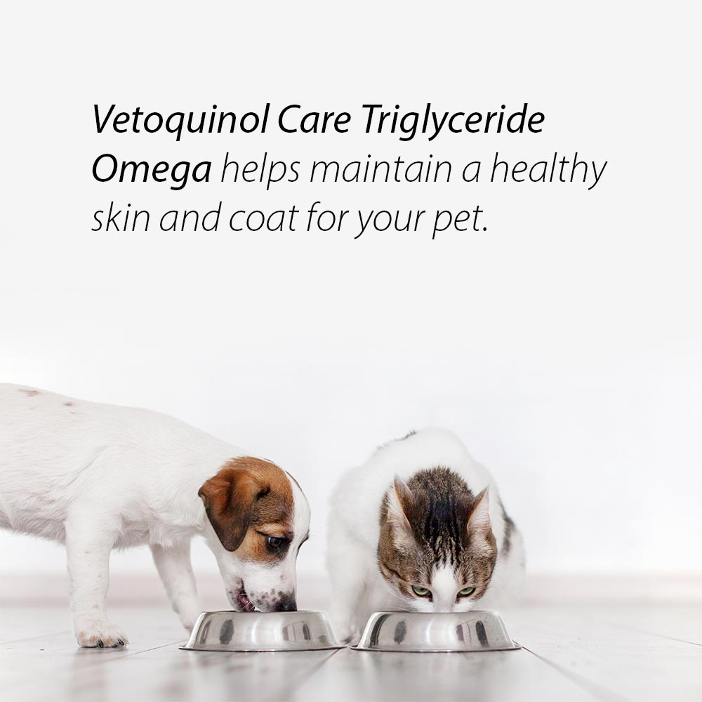 Vetoquinol Care Triglyceride Omega helps maintain a healthy skin and coat for your pet