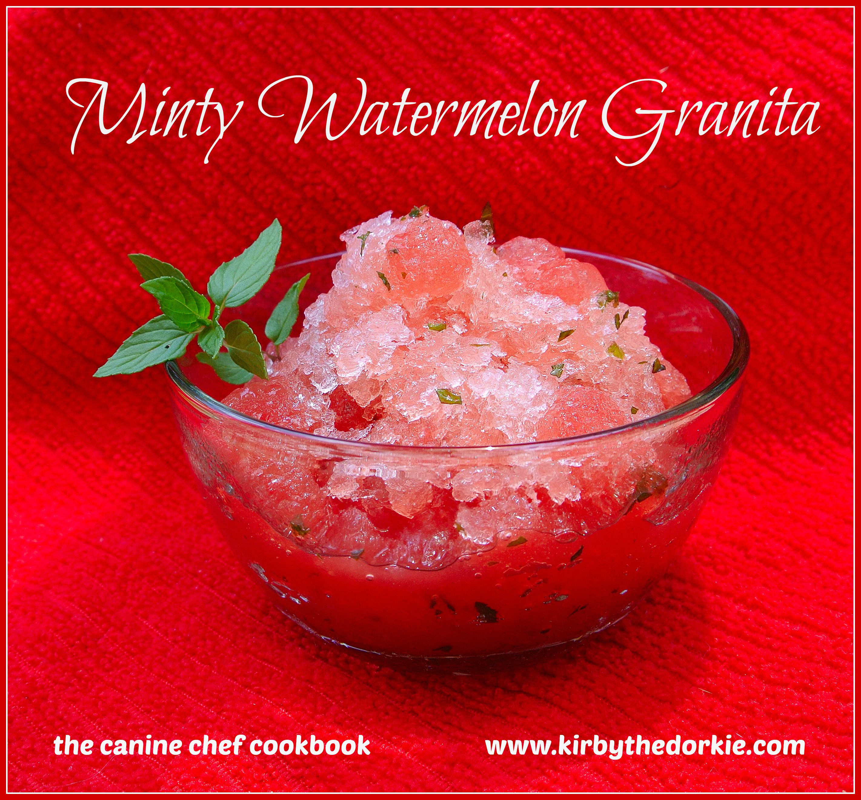 Minty Watermelon Granita Dog Treat Recipe