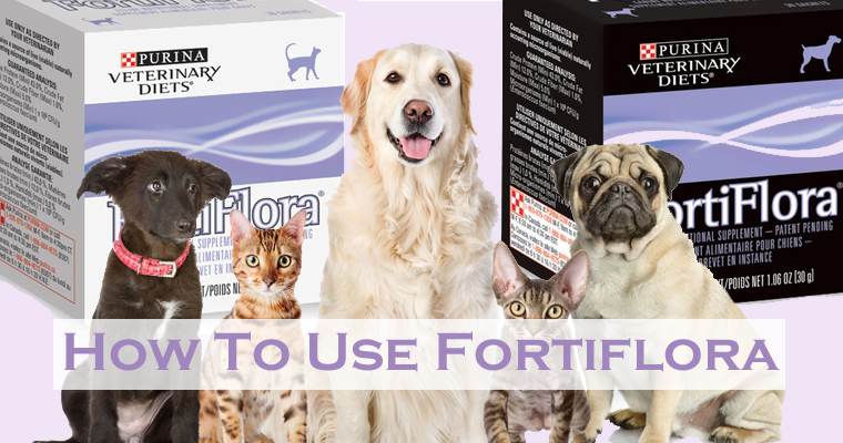 How to Use Fortiflora