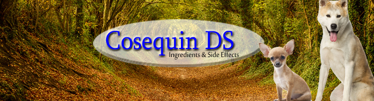Cosequin DS Ingredients and Side Effects