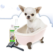 link to Tips for Bathing Your Dog