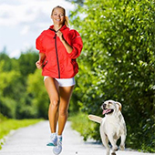 link to The Benefits of Exercising Your Dog