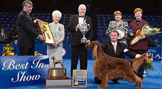 2010 National Dog Show Winner!
