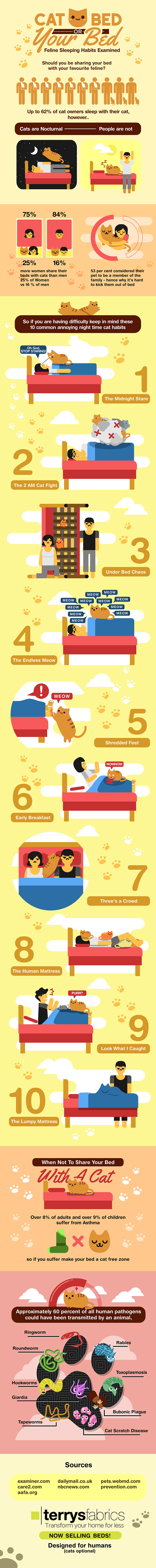 Should cats sleep in your bed? - infographic