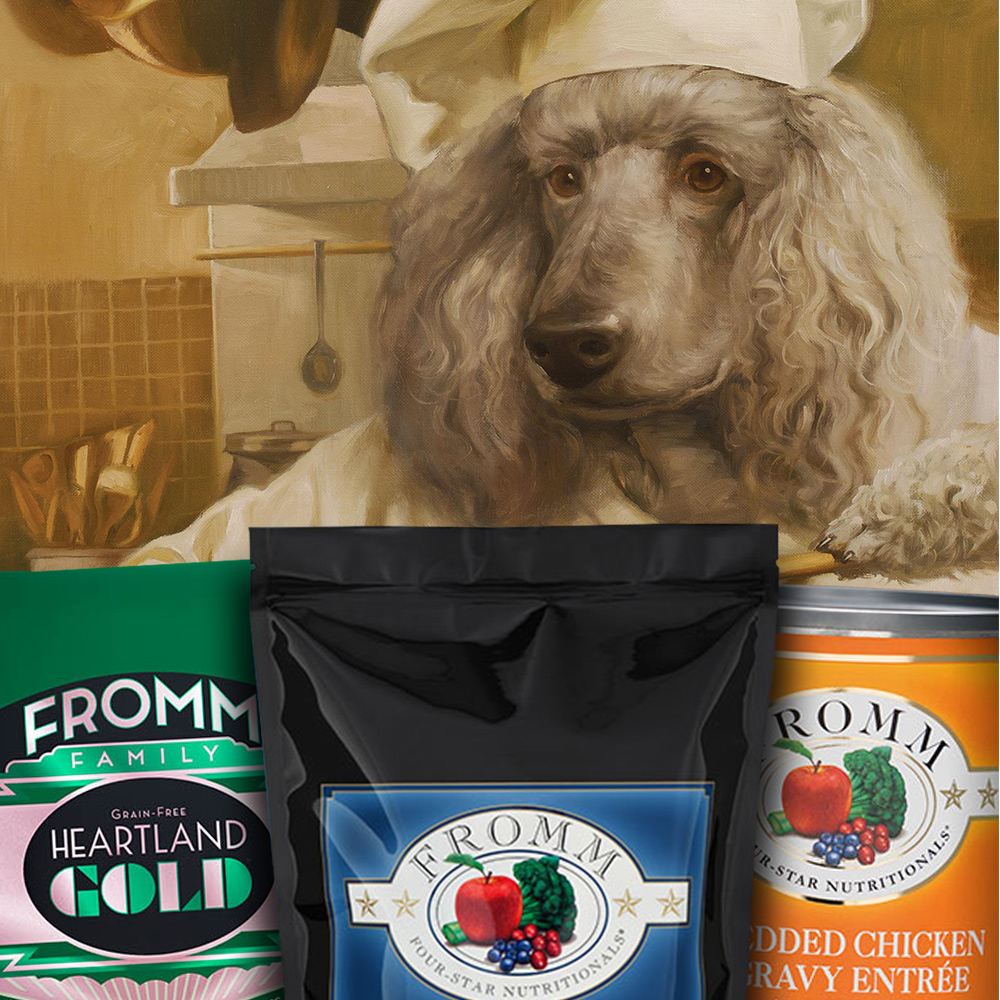 Poodle chef and dog food