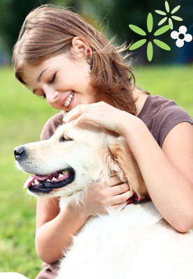 Healthy Digestion makes for Happy, Healthy Dogs