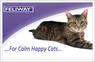 Feliway For Calm Happy Cats