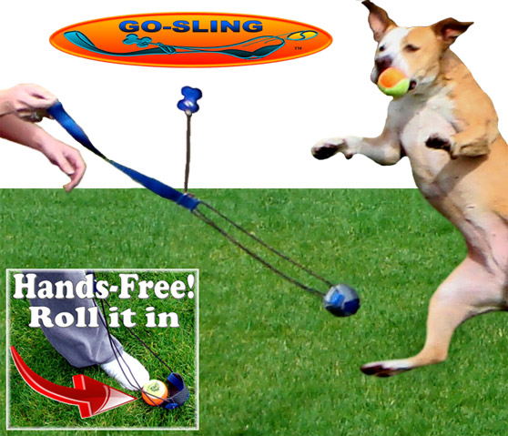 Active Paw Sling - Go-Sling